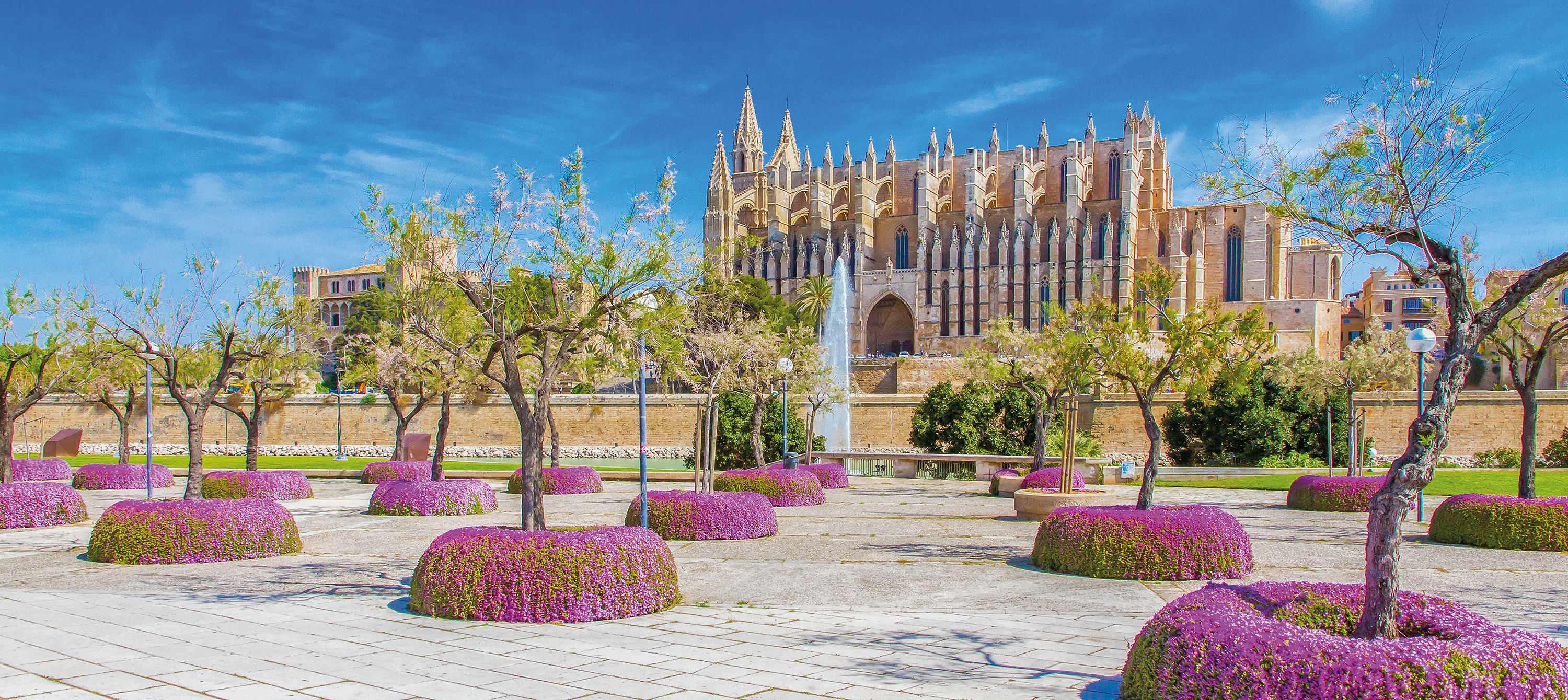 La Seu Cathedral and gardens